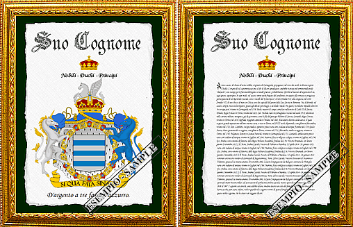 Examples of Heraldic Documents