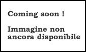 Roba: Definizione e significato di Roba Dizionario italiano