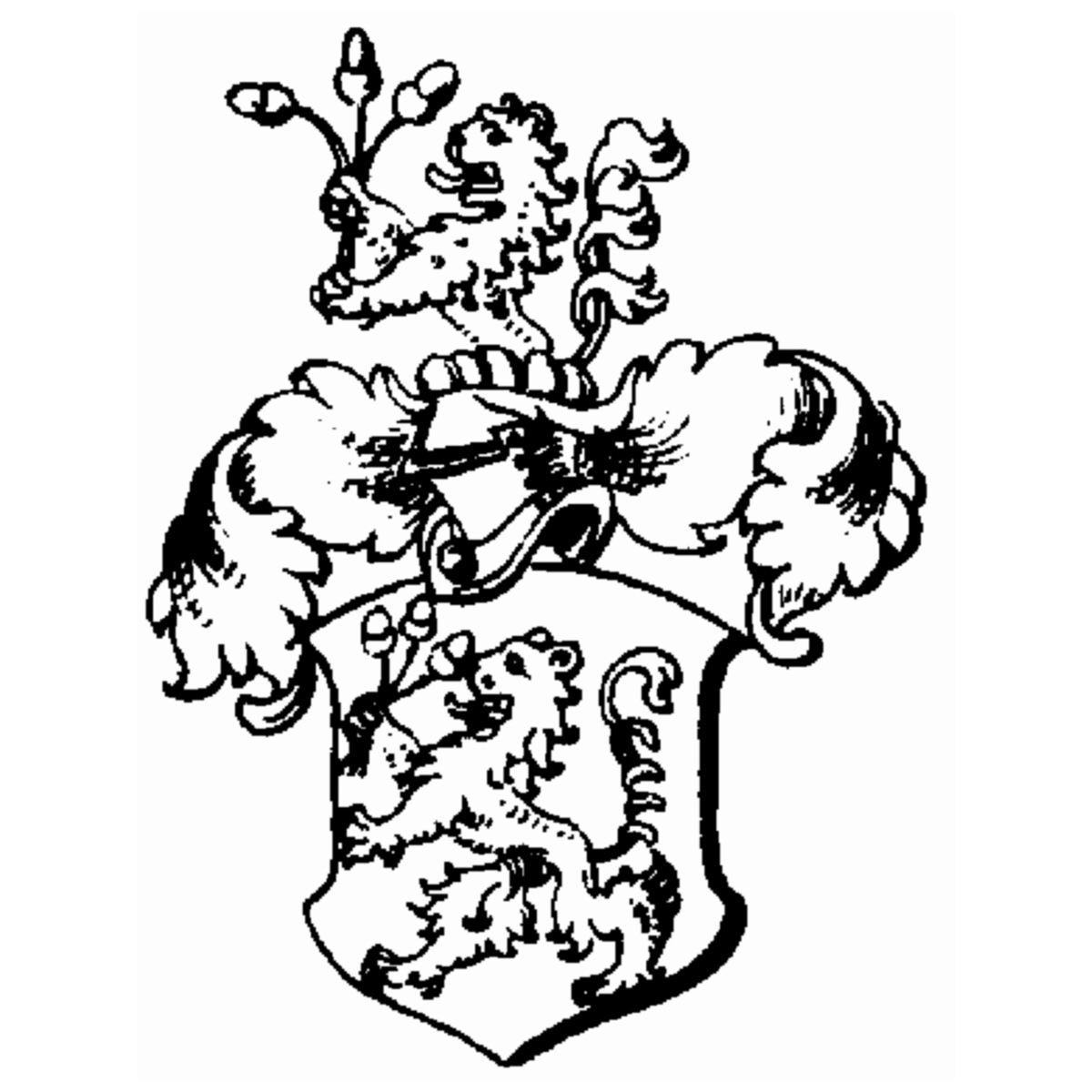 Coat of arms of family Lupf