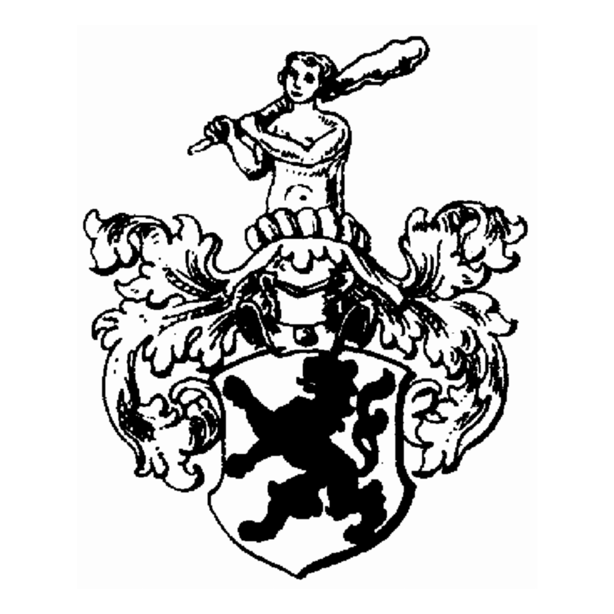 Coat of arms of family Velturner