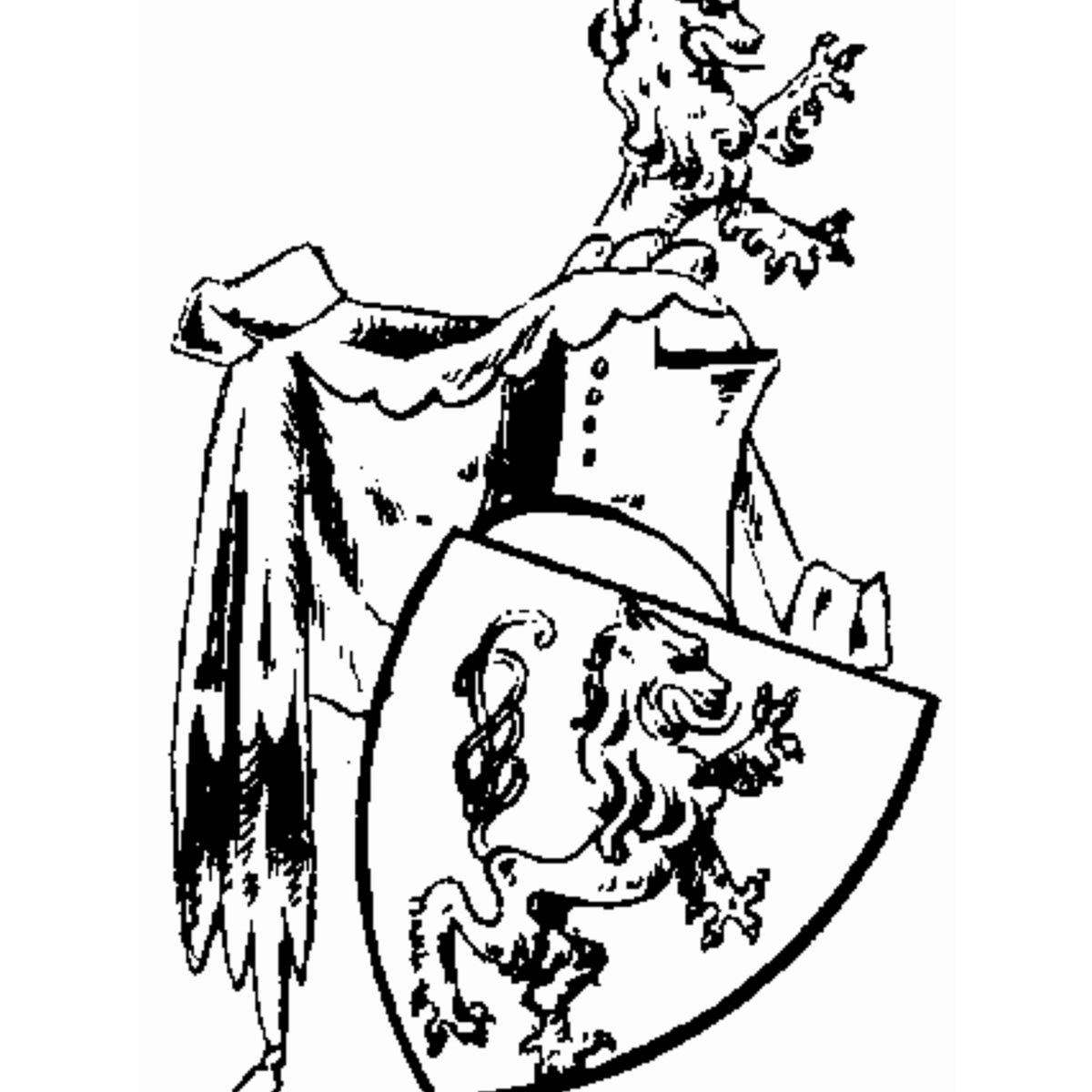 Coat of arms of family Perlinfeyn