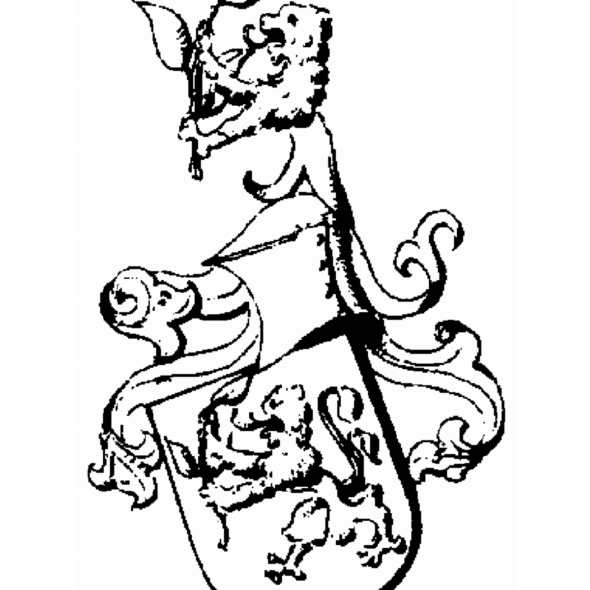 Coat of arms of family Kös