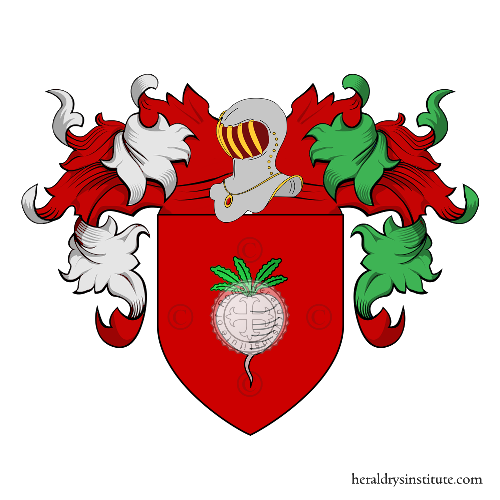 Coat of Arms of family Navoni