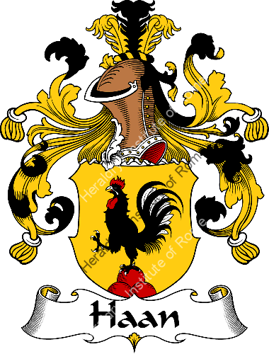 Coat of arms of family Haan - ref:30692
